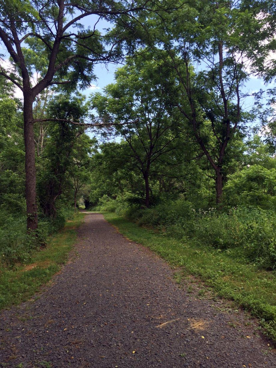 18 McDade Trail#